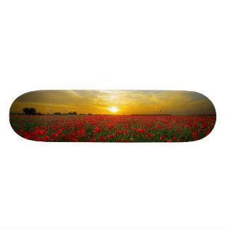 Girls skateboard Sunset on Poppy Field