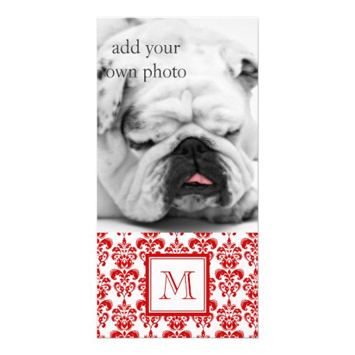 GIRLY RED DAMASK PATTERN 2 YOUR INITIAL PHOTO CARD TEMPLATE
