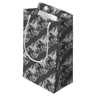 Giuseppe on route 1922 small gift bag
