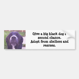Give a big black dog a second chance... bumper sticker