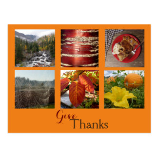 Give Thanks (Fall Collage) Postcard