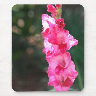 Glad-glad-gladiolus! mousepad