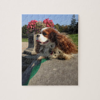 Glamour Pup! Jigsaw Puzzle