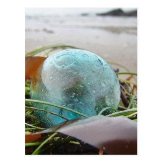 Glass Float in kelp Postcards