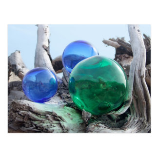 Glass Floats on Driftwood Postcard