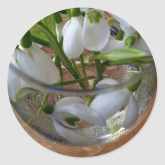 glass of snowdrops classic round sticker