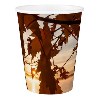 glass out of paperboard sheets of maple paper cup
