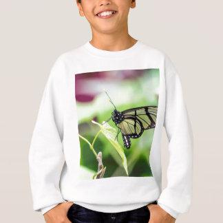 Glass Wing Butterfly Sweatshirt