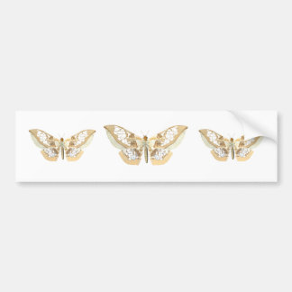 GlassWing Butterfly Bumper Sticker