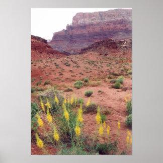 Glen Canyon Spring Poster