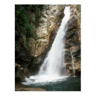 Glen Ellis Falls, White Mountains Postcard