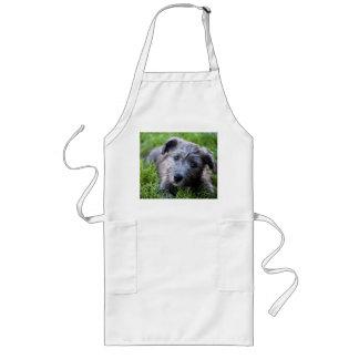 glen of imaal puppy long apron