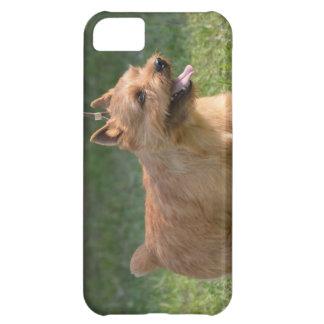 glen-of-imaal-terrier-10.jpg iPhone 5C case