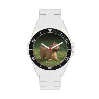 glen-of-imaal-terrier-10.jpg wristwatch