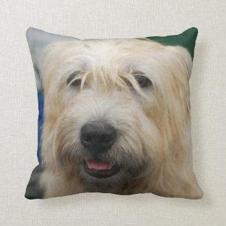 glen-of-imaal-terrier-7.jpg throw pillow