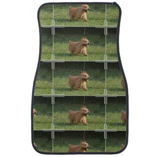 Glen of Imaal Terrier Car Mat