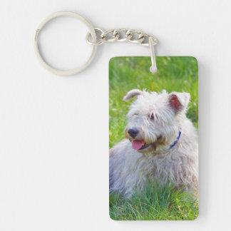 Glen of Imaal Terrier dog beautiful photo, gift Double-Sided Rectangular Acrylic Key Ring