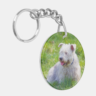 Glen of Imaal Terrier dog beautiful photo, gift Round Acrylic Keychain