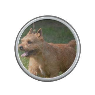Glen of Imaal Terrier Dog Bluetooth Speaker