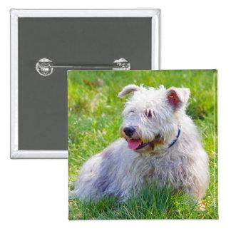 Glen of Imaal Terrier dog button pin gift idea