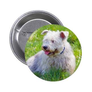 Glen of Imaal Terrier dog button, pin, gifti idea
