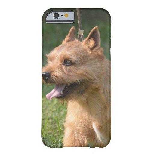 Glen of Imaal Terrier Dog iPhone 6 Case