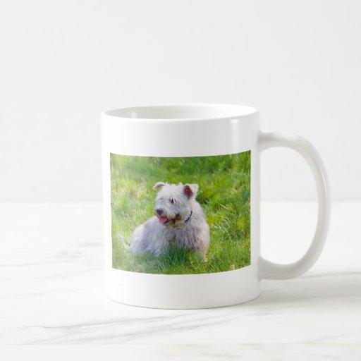 Glen of Imaal Terrier dog coffee mug, gift idea