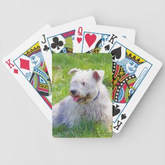 Glen of Imaal Terrier dog cute beautiful photo Poker Deck