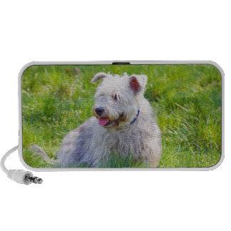 Glen of Imaal Terrier dog doodle speakers, gift Mp3 Speakers