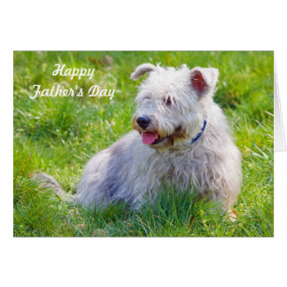 Glen of Imaal Terrier dog father's day card
