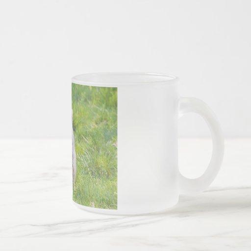 Glen of Imaal Terrier dog frosted glass mug, gift