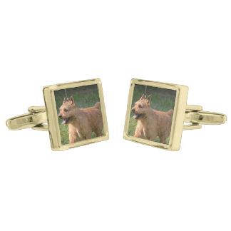 Glen of Imaal Terrier Dog Gold Finish Cuff Links