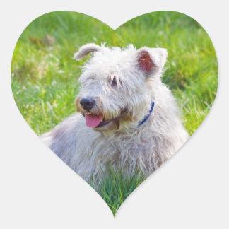 Glen of Imaal Terrier dog heart stickers, gift Heart Sticker