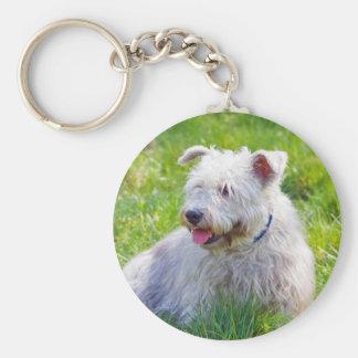 Glen of Imaal Terrier dog keychain, gift idea Basic Round Button Key Ring