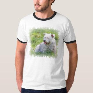 Glen of Imaal Terrier dog mens ringer t-shirt gift