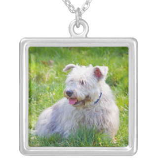 Glen of Imaal Terrier dog necklace, pendant, gift Square Pendant Necklace