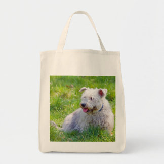 Glen of Imaal Terrier dog shopping tote bag