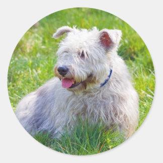 Glen of Imaal Terrier dog sticker, stickers, gift Round Sticker