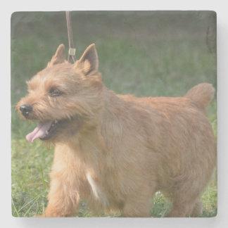 Glen of Imaal Terrier Dog Stone Coaster