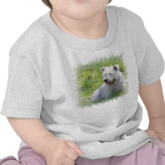 Glen of Imaal Terrier dog unisex infant t-shirt