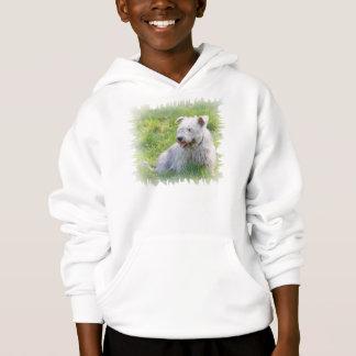 Glen of Imaal Terrier dog unisex kids hoody