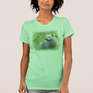 Glen of Imaal Terrier dog womens t-shirt, gift Shirt