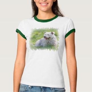 Glen of Imaal Terrier dog womens t-shirt, gift T Shirts