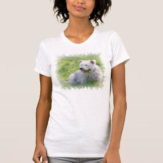 Glen of Imaal Terrier dog womens t-shirt, gift T-shirts
