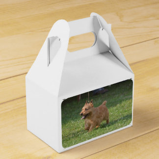 Glen of Imaal Terrier Party Favour Box