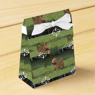 Glen of Imaal Terrier Favour Boxes
