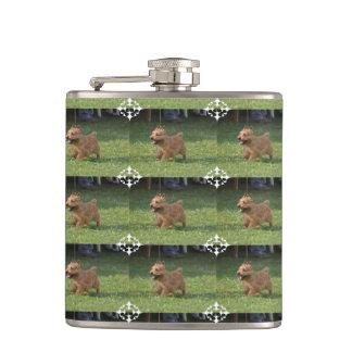 Glen of Imaal Terrier Flasks
