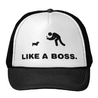 Glen of Imaal Terrier Hats
