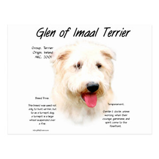 Glen of Imaal Terrier History Design Post Cards