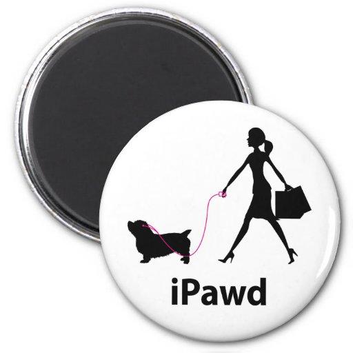 Glen of Imaal Terrier Fridge Magnets